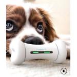 Что нового у собак? Обзор популярных гаджетов
