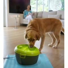 """Автоматическая поилка фонтан для собак Feed-Ex """"DogH2O"""""""