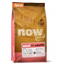 Корм NOW Natural holistic беззерновой для взрослых собак с форелью и лососем для чувствительного пищеварения - 11,35 кг - Grain Free Fish Adult Recipe DF