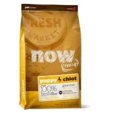Корм беззерновой для щенков с индейкой, уткой и овощами - 5,45 кг - Fresh Puppy Recipe Grain Free