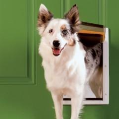 Утепленная дверца для домашних животных -  Extreme Weather Pet DoorTM - размер L