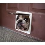 Выбор дверцы для домашних животных