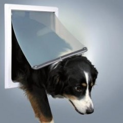 Дверца для собак, 2 функции, (30,8х38см), пластик, белый.